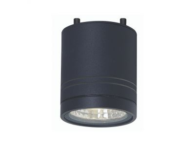 LITHO 9W Exterior Ceiling Light